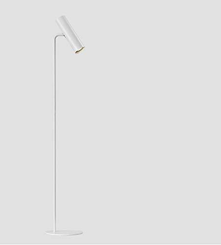 EMRE Gift Floor Lamp, Nordic Simple Floor Lamp, Metal Post-modern Creative Floor Lamp (Color : White frame white light)
