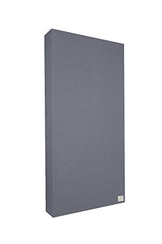Schallabsorber Standard 100x50x11 cm by Addictive Sound – Raumakustik Akustikbild – Viele Farben - Dunkelgrau