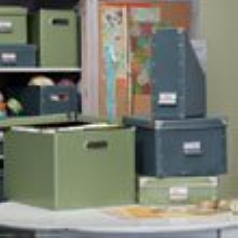(blueestone) - Resource International 8061325 cargo Naturals Dual File Box blueestone