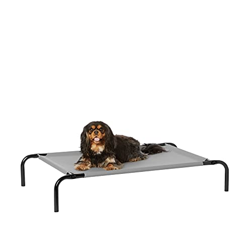 Amazon Basics Cooling Elevated Pet Bed, Small (36 x 22 x 7.5 Inches), Grey