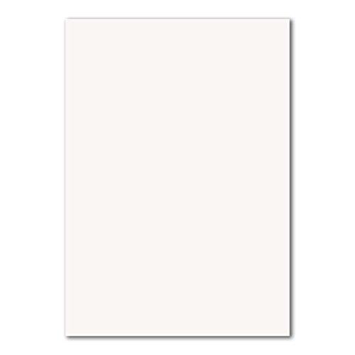 50 DIN A4 Papier-bögen Planobogen -Hochweiß - 240 g/m² - 21 x 29,7 cm - Bastelbogen Ton-Papier Fotokarton Bastel-Papier Ton-Karton - FarbenFroh®