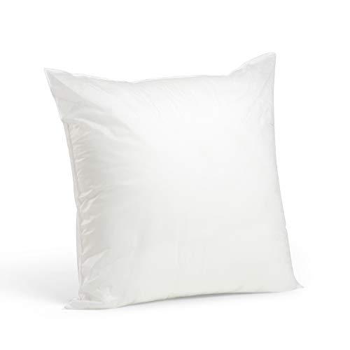 "Price comparison product image Foamily Premium Hypoallergenic Stuffer Pillow Insert Sham Square Form Polyester,  20"" L X 20"" W,  Standard / White"