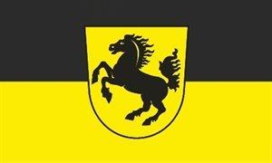 Flagge Fahne ca. 90x150 cm : Stuttgart