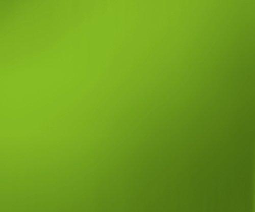 Eurographics Green Splash Guard 50x60 ESG-Küchenspritzschutz, Glas, Mehrfarbig, 60 x 50 x 0,5 cm