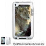 African Lion Lioness Photo iPOD 4 Touch Hard Case Cover Shell White 4th Generation White