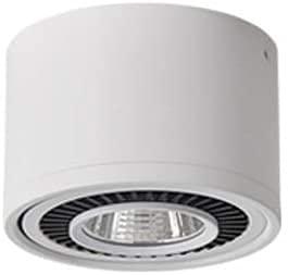 JXEXF Skingk LED superficie Spotlight Plafón de techo simple Spotlight Plafón de COB ajustable Guest Exposition Hall Lámpara Aisle Porche Fondo Pared Pequeño Foco (Color: Negro, Tamaño: 10 W)