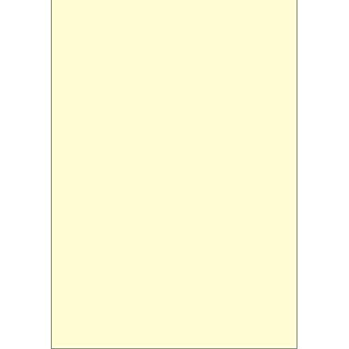ササガワ タカ印 賞状用紙 10-1969 手作り賞状 作成用紙 A3 10枚 クリーム [3705]