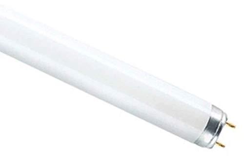OSRAM Leuchtstofflampe LUMILUX T8, 18 Watt, G13 840 EEK A