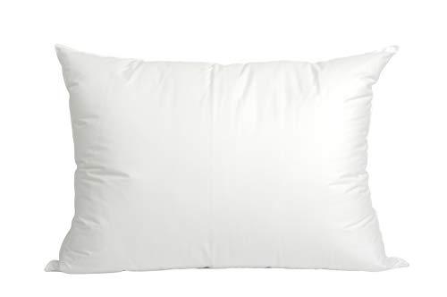 Blue Ridge Home Fashions 400 Thread Count White Down Pillow, King