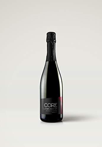 6 Bottiglie 750ml di Lambrusco Mantovano Igp Idea Regalo Semisecco FUTURE MY WINES