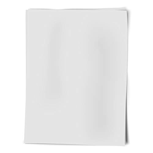 Royal Brites Poster Board White, 22 x 28 Inches, 50-Sheet Case (24301)