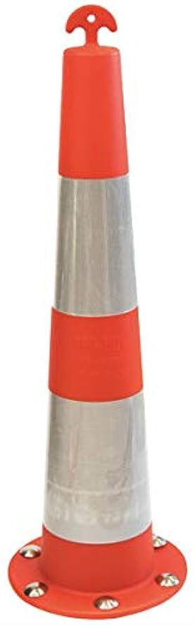 勤勉氷ワイプカーボーイ (CAR-BOY) フジヤマコーン ネオジム磁石内蔵 10本セット メーカー直送 FC-01