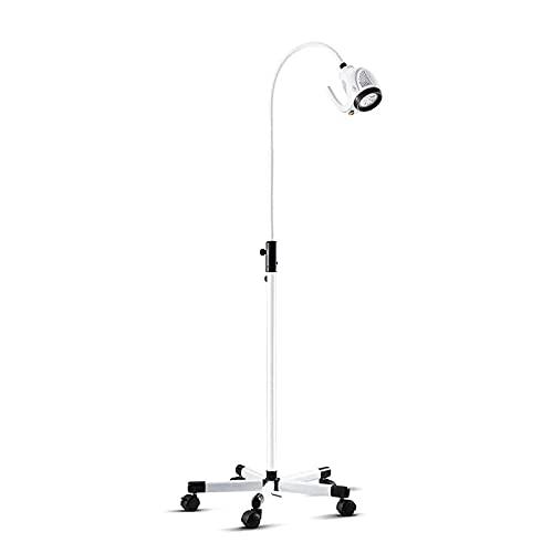 ANYURAN Lámpara de luz de Examen médico LED 21W, Lámpara de iluminación Auxiliar quirúrgica móvil para Manguera de Cuello de Cisne con Mango Grande, para odontología ginecológica, 95 V-240 V