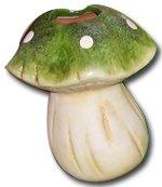 '4umidificatori di piante funghi '