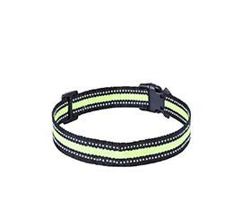 FIMITECH Dog Training Collar, Dog Shock Collar with Beep, Vibration and Shock Training Modes for Small Medium and Large Dogs, P67 Waterproof, Rechargeable (Green)