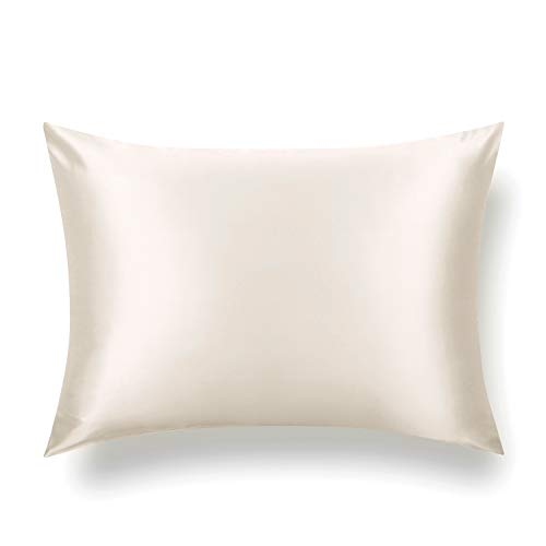 TAFTS Silk Pillowcase 27 Momme 100% Pure Mulberry Silk Pillowcase for Hair and Skin, Both Sides Grade 6A Long Fiber Natural Silk Pillow Case, Concealed Zipper, Standard, Ivory White