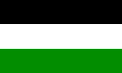 magFlags Flagge: XL Stadt Gelsenkirchen Die Flagge der Stadt ist schwarz-weiß-grün | Querformat Fahne | 2.16m² | 120x180cm » Fahne 100% Made in Germany