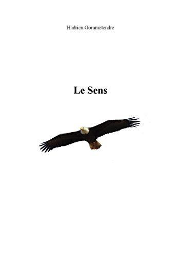 Le Sens (Connexion t. 1) (French Edition)