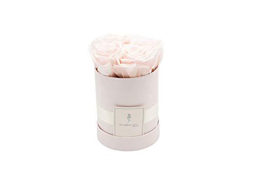 Blooming Gift - Infinity Flowerbox - Rosen-Box - Blumenbox - Ewige Blume - Geschenk - 3 Jahre haltbar - Baby Rosa/Baby Rosa - Große Small: H14 x Ø12cm