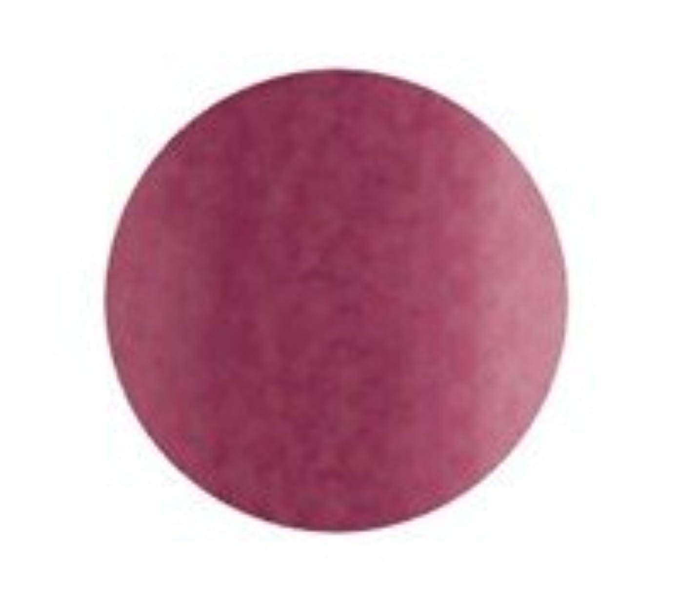 キャメル地雷原リースBio Sculpture Gel (バイオジェル) カラー2026 ピンクティアラ