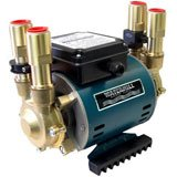 3.0 Bar Positive Twin Impeller Brass Heavy Duty Regenerative Shower Pump
