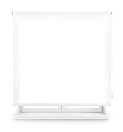 Blindecor Ara Estor enrollable translúcido liso, Blanco óptico, 180 x 250 cm, Manual