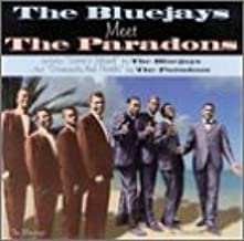 Bluejays Meet the Paradons