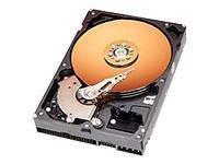 Western Digital 40GB 7200RPM 2MB CACHE IDE Bulk/OEM Hard Drive WD400BB
