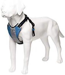 Stunt Puppy Go Dog Glo Harness Large Blue product image