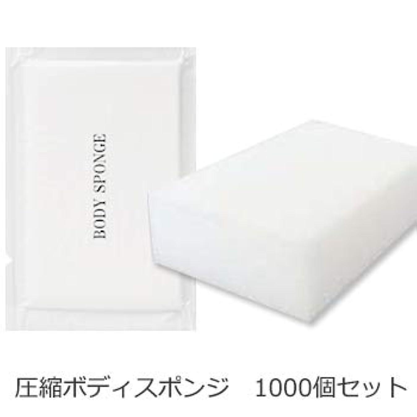 オーロック恥合理的ボディスポンジ 海綿タイプ 厚み 30mm (1セット1000個入)1個当り11円税別