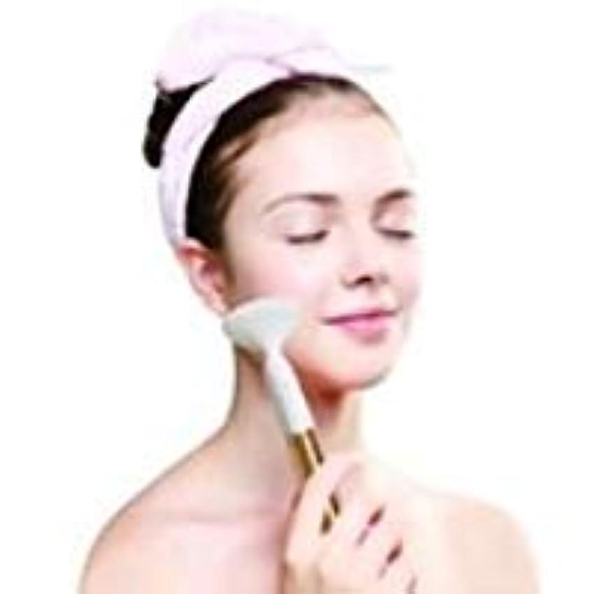 メーカー絶縁するヒゲクジラお風呂で美顔 洗顔 防水洗顔 ブラシ FREYA フレイヤ (ゴールド)