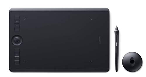 Wacom Intuos Pro Digital Graphic Drawing...
