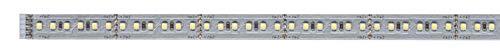 Paulmann 70569 MaxLED 1000 Strip 1 m 6500 K Tageslichtweiß LED Stripe unbeschichtet 11,5W Lichtband 1100 lm Lichtstreifen 144 LED 24 V