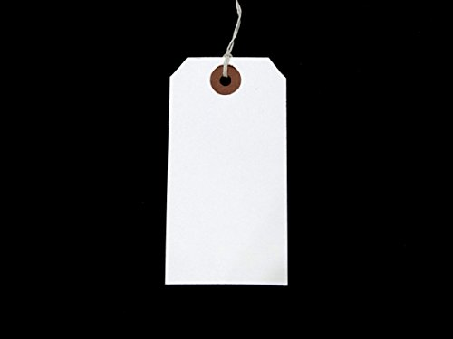 White Strung Tags 120mm x 60mm Reinforced Luggage Tags Tie On String Labels (100 Pack) Ivy