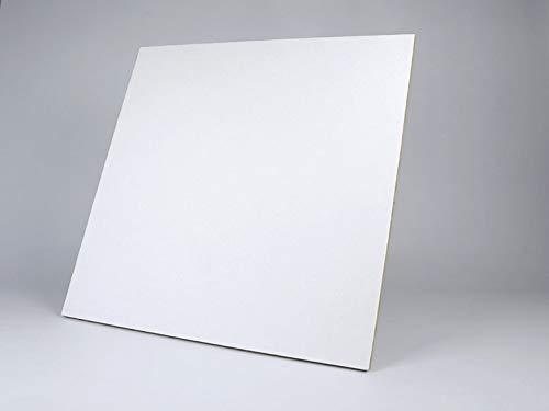 40 placas Acústicas de Techo Registrable. Fabricada en lana de roca. Medidas 60x60 cm Minerval 12