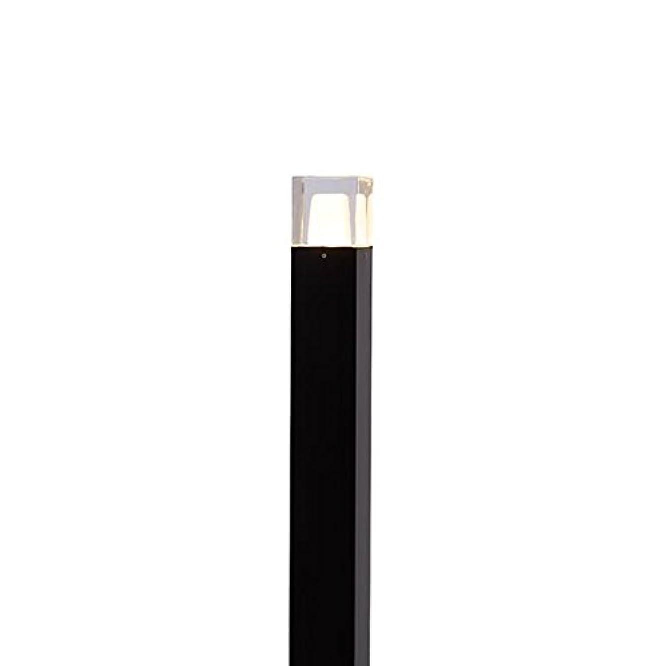 セットアップ意外いいねタカショー ポールライト(ローボルト) エクスレッズポールライト 3型(LED色:電球色) 12V用 #73474900 HBC-D39K 『ローボルトライト』 『エクステリア照明 ライト』 ブラック