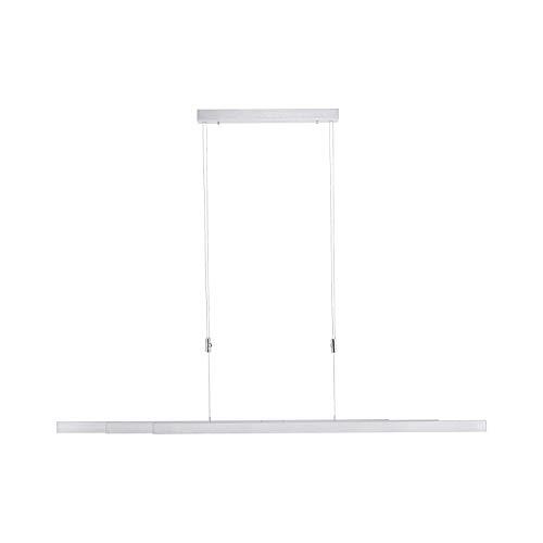 Paul Neuhaus -  LED Pendelleuchte