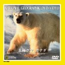 北極グマ カナダ [DVD]