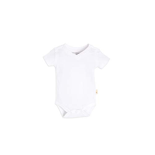 Burt's Bees Baby Baby Boys, Short Long Sleeve One-Piece Bodysuits, 100% Organic Cotton, Cloud Reverse Seam V-Neck, 12 Months
