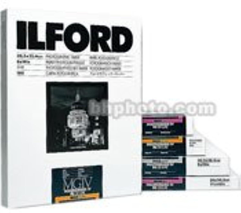 Ilford 1769579 Fotopapier Rolle Ei 1 106,7 cm x 10 m B000LJD62E    | Deutschland Store