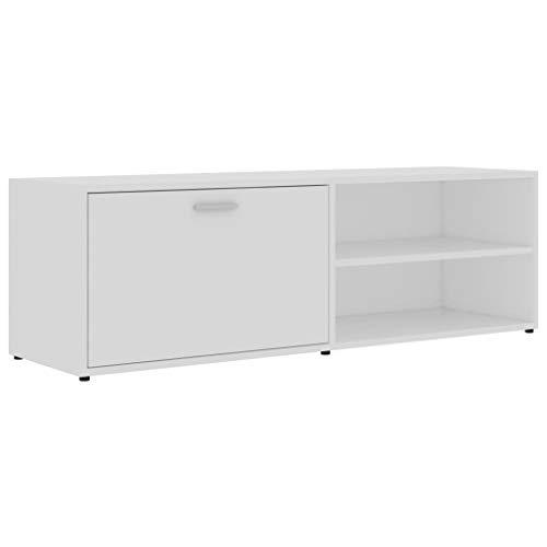 vidaXL TV Schrank mit 1 Tür 2 Fächern TV Möbel Lowboard Fernsehtisch Fernsehschrank Sideboard HiFi-Schrank Weiß 120x34x37cm Spanplatte