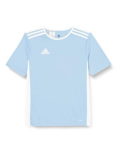 adidas Entrada 101 Camiseta de Fútbol para Hombre de Cuello Redondo en Contraste, Azul (Clear Blue/White), XS