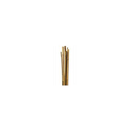 TodoHuertoyJardin – Tutor de caña de bambú 1.5 mts. 12-14 mm