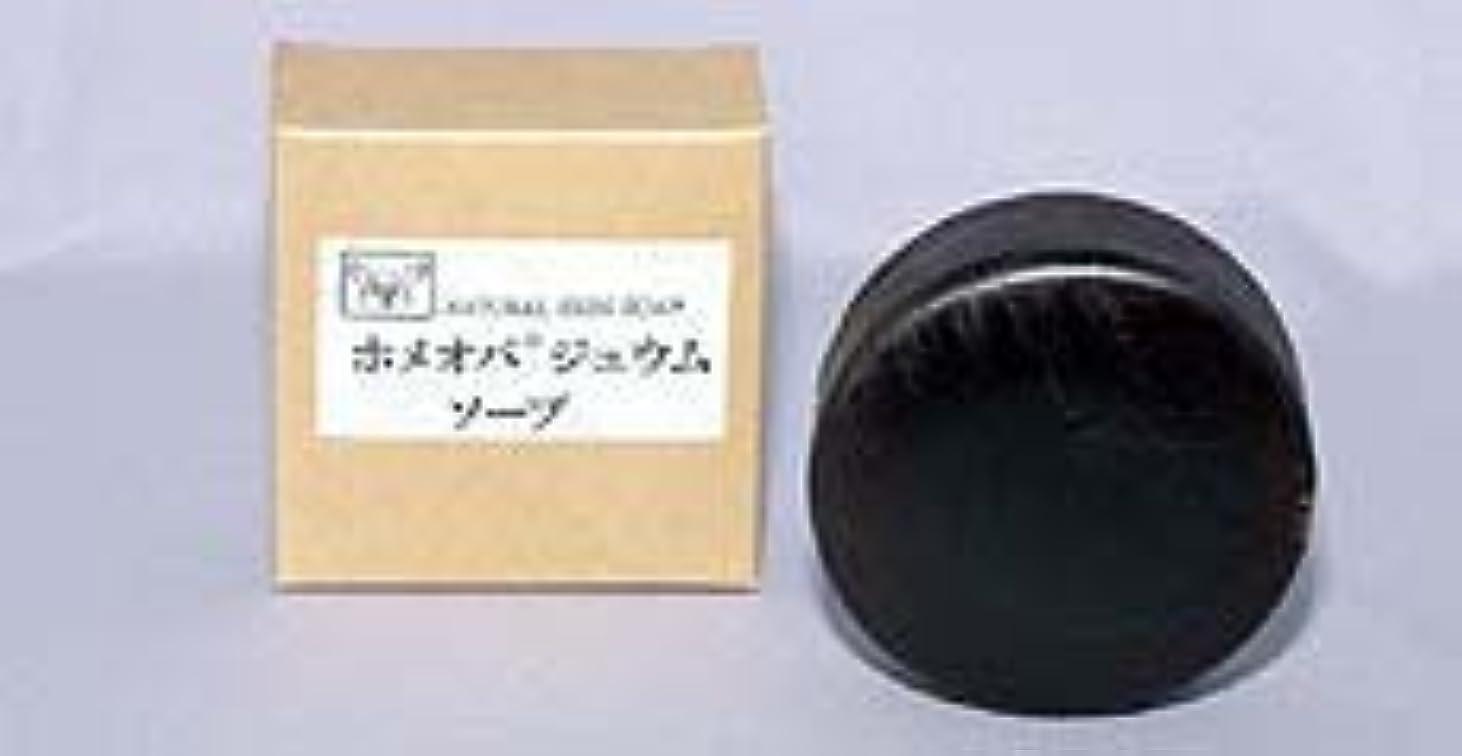 ホメオパジュウムソープ 100g×(6セット)