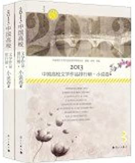 2013 Chinese university rankings literary fiction volumes (Set 2 Volumes)(Chinese Edition)