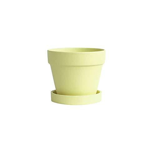 XHZJ Morandi Couleur Salon Pot de Fleur Accessoires de Maison Accessoires de Bureau 20 * 19 * 20 Pots en Argile Plantes succulentes Plante en Cactus Décoration créative Maison Pot de Fleurs Conteneur