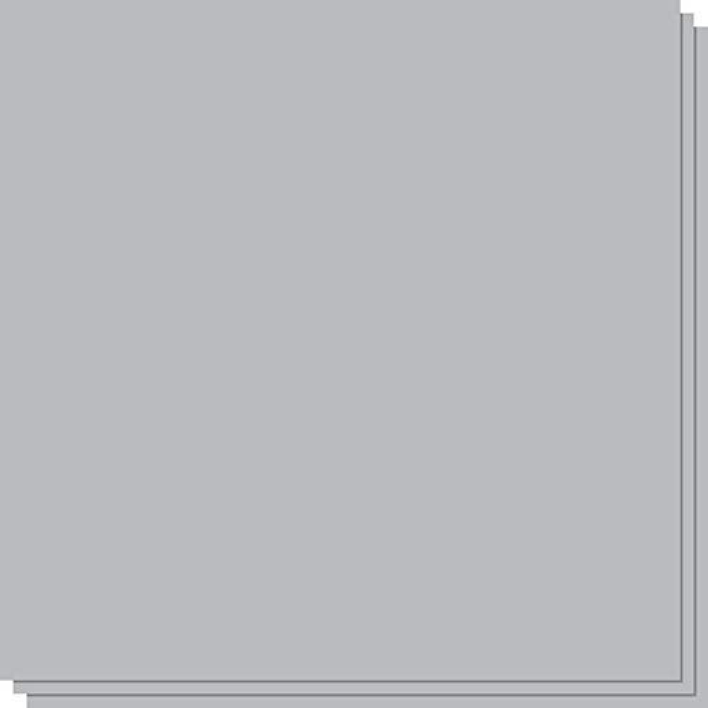 10 x Fabriano Fabriano Fabriano Ingres 160gsm - grau - Half Sheet (50x35cm   19.7 x13.8 ) B008U7W65M | Adoptieren  275e6f