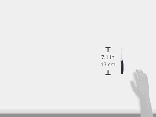Zwillingツヴィリング「ツヴィリングフェスパーナイフ黒」パントマトベジタブルナイフ【日本正規販売品】38070-120