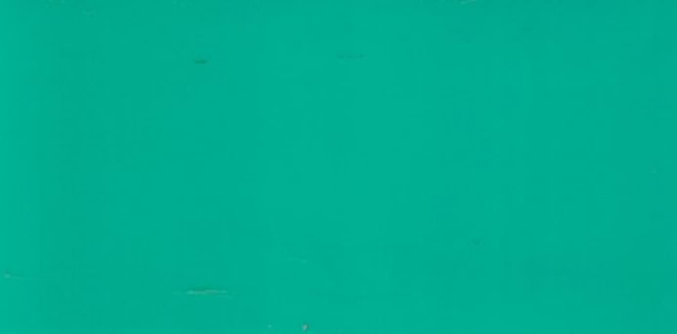 Efco Wax Sheet, Turquoise, 200 x 100 x 0.5 mm, 2-Piece