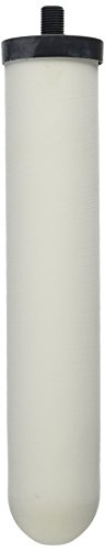 Doulton W9124020 Chlorasyl Ceramic 10 Inch Filter Replacement Candle